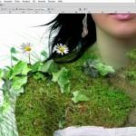 """Schwaighofer-ART: Photoshop Composing """"Mauerblümchen"""""""